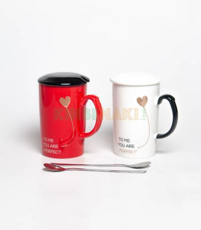 You Are Perfect Couples Mugs